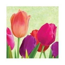 Napkins BEV-Spring Bloom (18pk-2ply) (Discontinued)