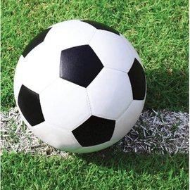 Napkins-BEV-Soccer Fanatic-18pkg-2ply