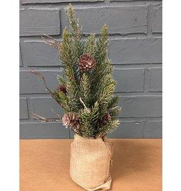 "Snowy Glitter Pine Tree in Gi    Bag, 12"""