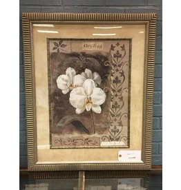 Large Framed Orchid Print