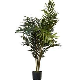 Beachcrest Home Black Hammock Palm Tree with Pot