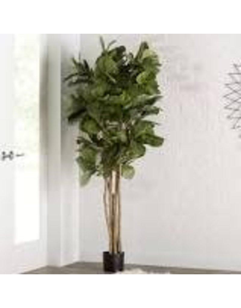 Mistana Leaf Floor Foliage Tree in Planter