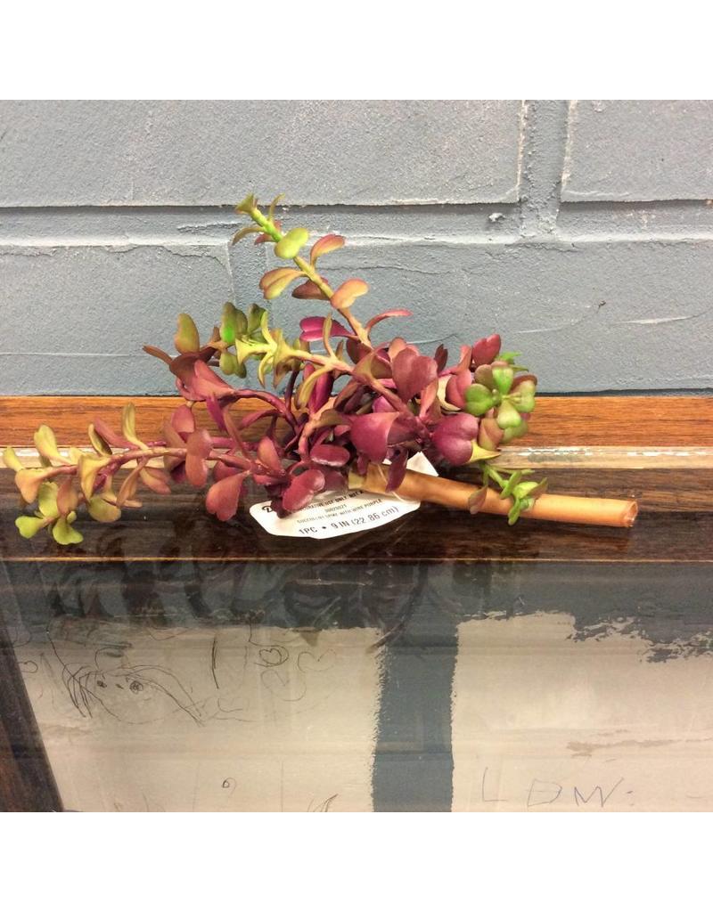 "Purple Succulent Pick 9"""