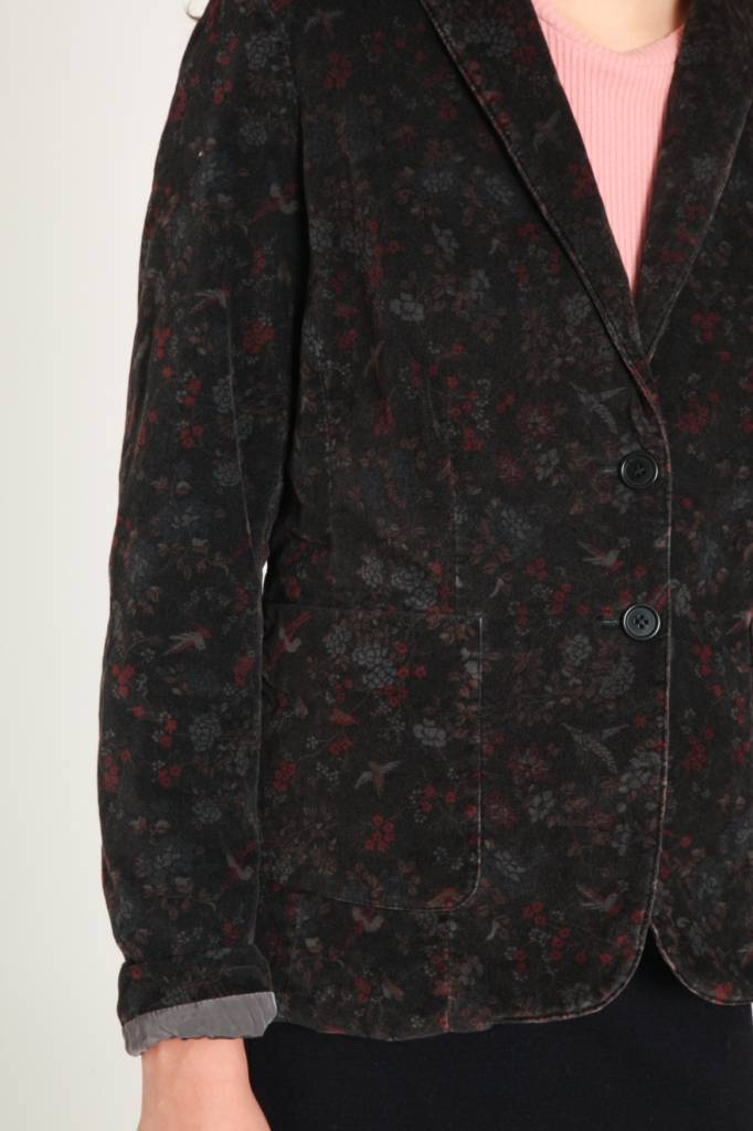 Local Emmy Jacket Colibri Print