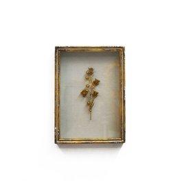 Framed Rampion Bell Flower