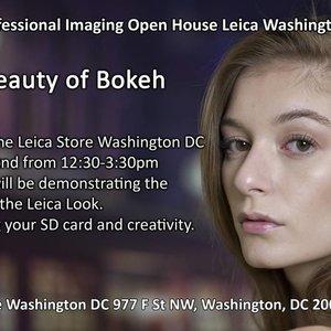 6/2: the beauty of bokeh