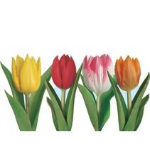 Tulip Cutouts
