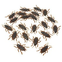 72 Ct Cockroaches