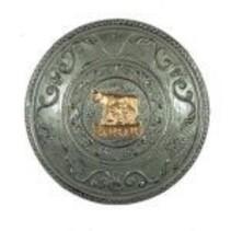 Deluxe Shield