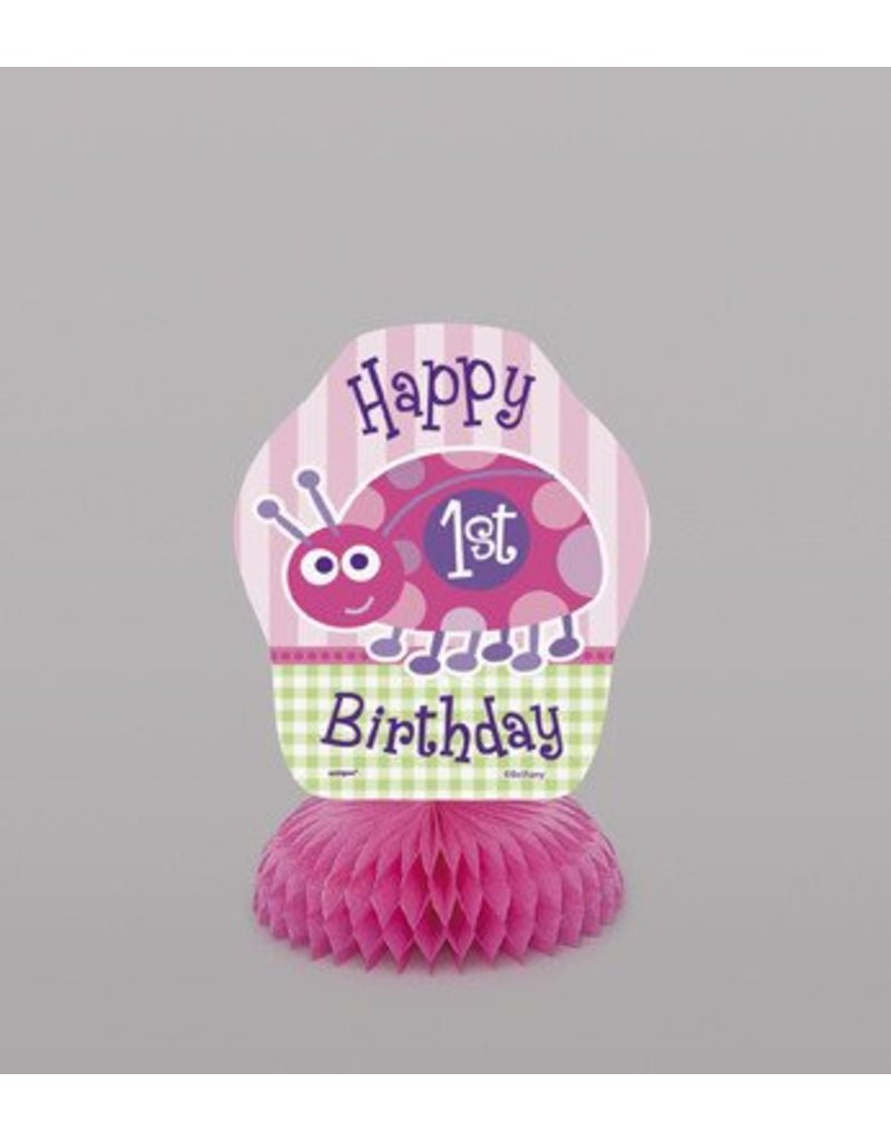 1st Birthday Lady Bug Decorations
