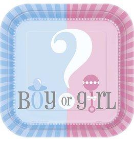 "Gender Reveal 7"" Plate 10 CT"