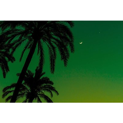 Facemount Acrylic - Green Night 1/4 Inch Thick Acrylic Glass