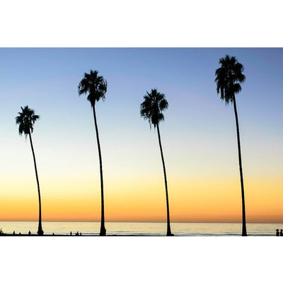 Facemount Acrylic - Californian Palm Trees 1/4 Inch Thick Acrylic Glass