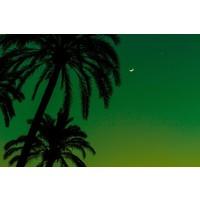 Facemount Metal - Green Night UV Printed on Metal