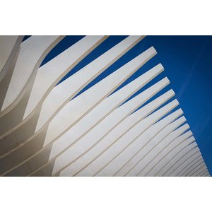 Print on Paper US250 - Calatrava Architecture