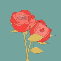 Print on Paper US250 - Roses Rosaceae Flower