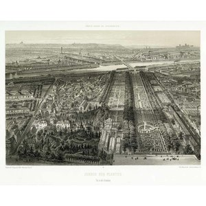 Print on Paper US250 - Paris in it's Splendour The Botanical Garden