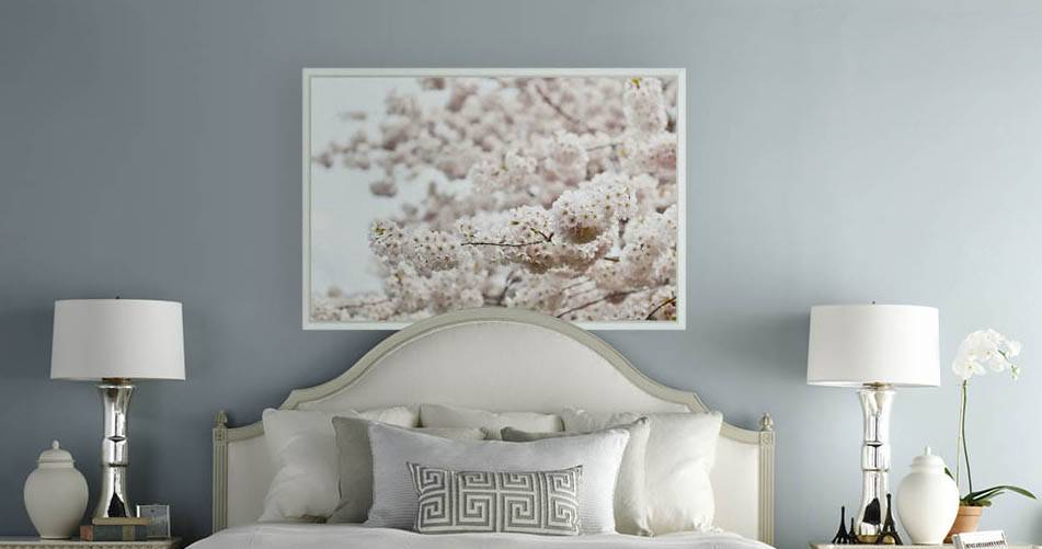 Pink Blossom - The Picturalist on dynasty home designs, house home designs, modern family home designs, empty nest home designs, castle home designs, las vegas home designs, bamboo home designs, popular home designs,