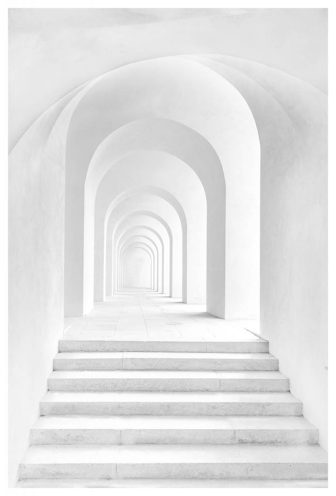 perspective in white by robin schreiner the picturalist
