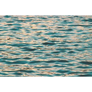 Print on Paper US250 - Waveland Print on Archival Paper