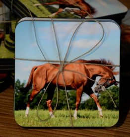 California Chrome Coaster Set