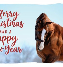 California Chrome Holiday Card Set