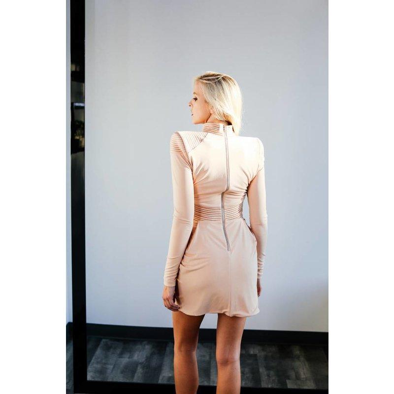 Swallow Dress