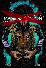Jimi Hendrix Manic Depression By Fishwick