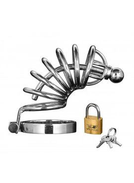 Masters Asylum 6 Ring Locking Chastity Cage