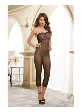 Sheer Lace Versatile Bodystocking & Dress (black)