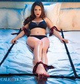 Cal X Scandal Scandal 8 Points of Love Bed Restraint