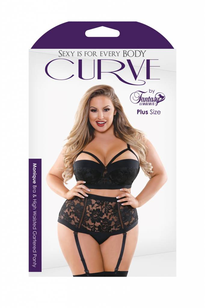 Fantasy Lingerie Monique Bra & High-Waisted Garter Panty Set - Curve