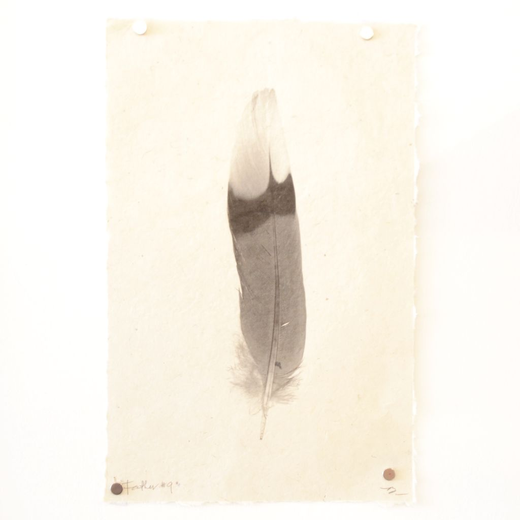 Everyday Small feather print on handmade Nepalese paper.