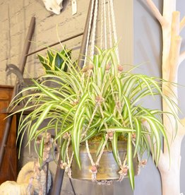 Everyday Hanging Jute Macrame Plant Holder, 34""