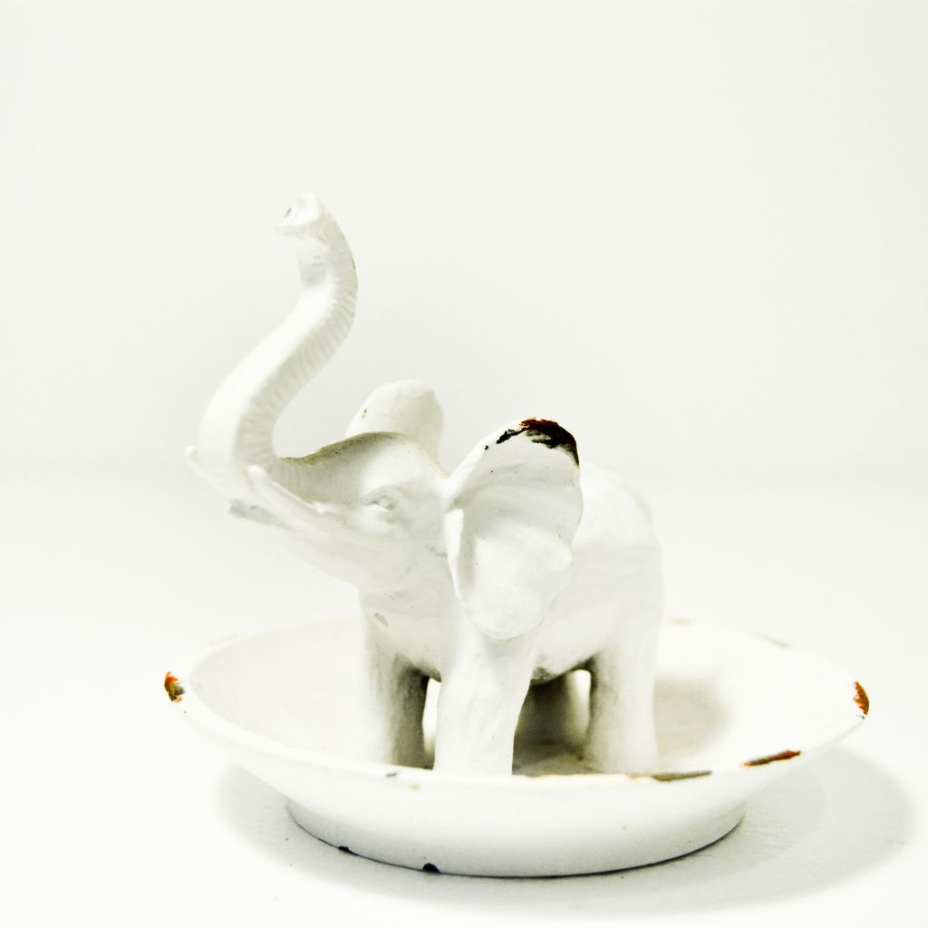 Everyday White Elephant Ring Dish