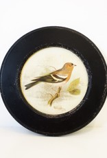 Everyday Vintage Round Bird Prints