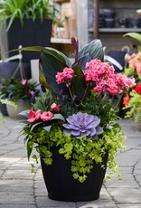 Everyday Patio Planter Wed. May 23rd