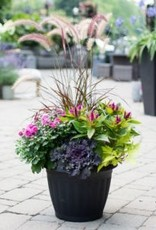 Everyday Fall Planter Wed. Sept 19