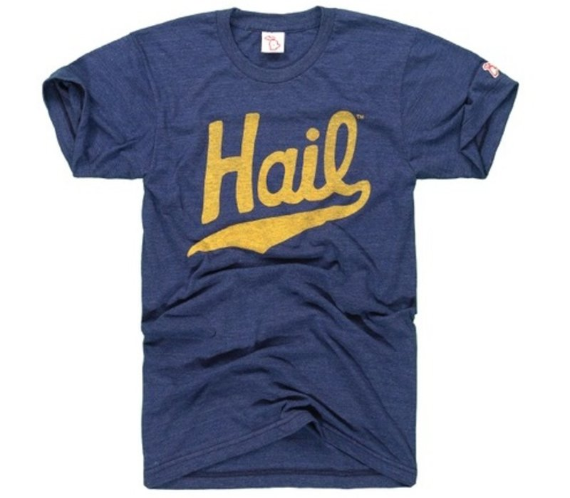 The Mitten State Hail Tee