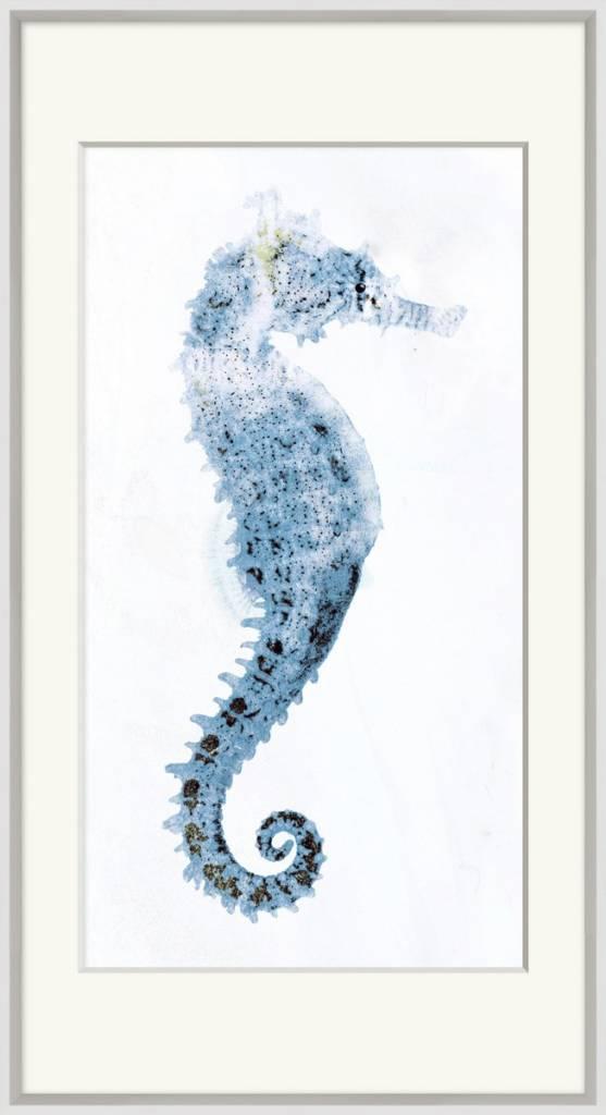 Weathered Seahorse 1