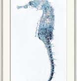 Weathered Seahorse 2