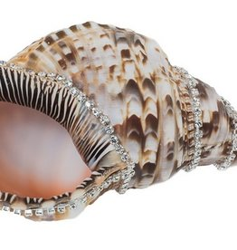 Triton Shell w/diamonds