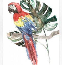 Perched Parrot 2