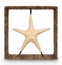 Starfish Shadow Box