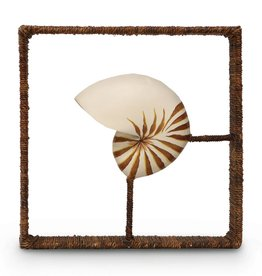 Nautilus Shadow Box