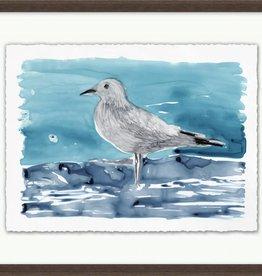 Lowcountry Gulls 1