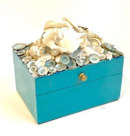 Blue Limpet Box w/Shells