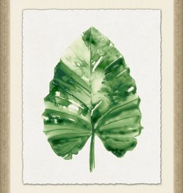 Tropic Palm I