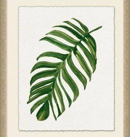 Tropic Palm 3