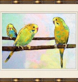 Parakeet Family 2